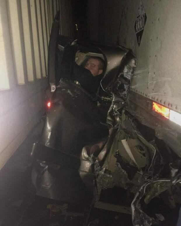 Водитель легковушки чудом выжил в аварии,будучи зажатым между 2 фурами авария, дтп, животные, история, родился в рубашке