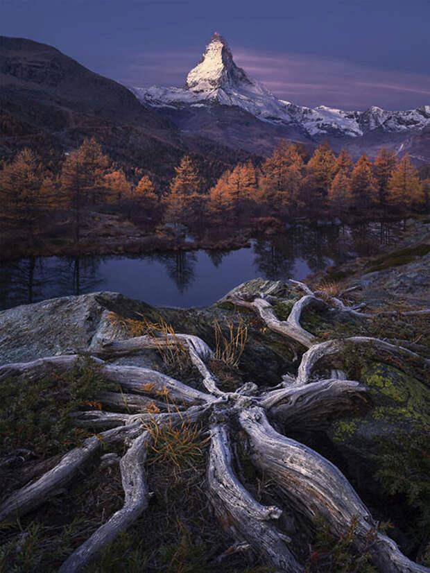 Красота природы невероятно вдохновляет.