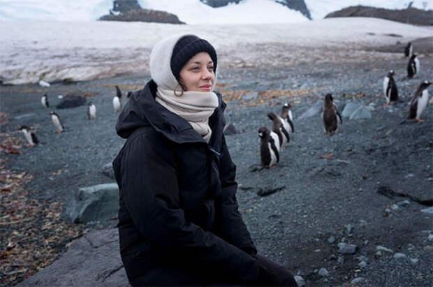 Марион Котийяр отправилась с экспедицией в Антарктиду