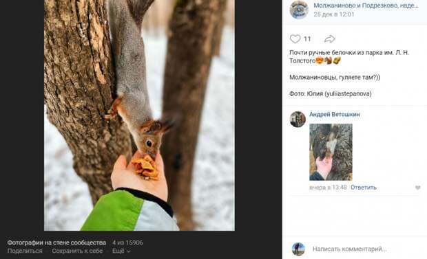 Фото дня: в парке имени Толстого обнаружили ручного грызуна