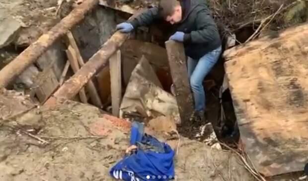 Собаку сщенком вытащили спасатели иззабросанной мусором ямы вСтаврополе