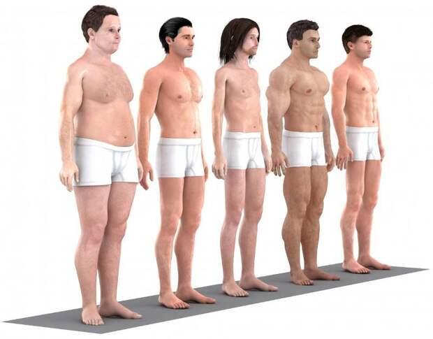 Как за последние 150 лет менялись представления об «идеальном мужском теле»