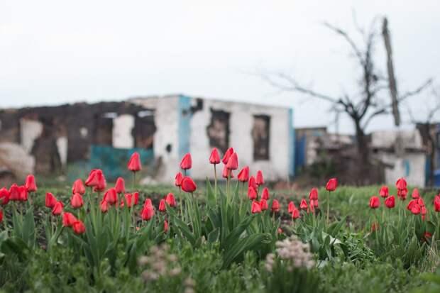 Донбасса Украине не видать: генерал СБУ сделал громкое заявление