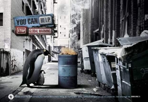 Ты можешь помочь: новые акценты в социальной рекламе