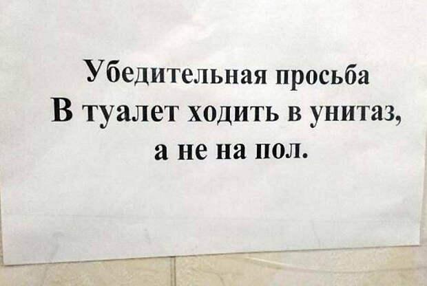 Просты истины на Novate.ru. | Фото: Batona.net.