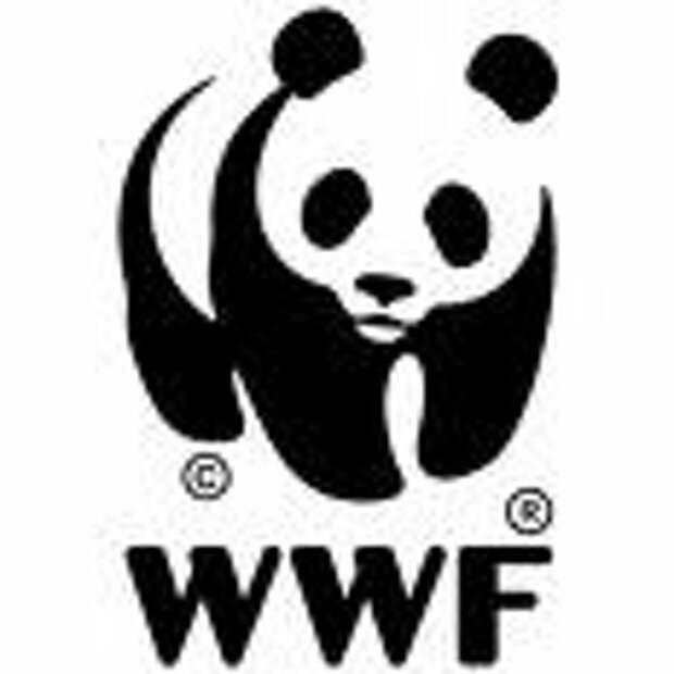 WWF: спасение рядового Умки