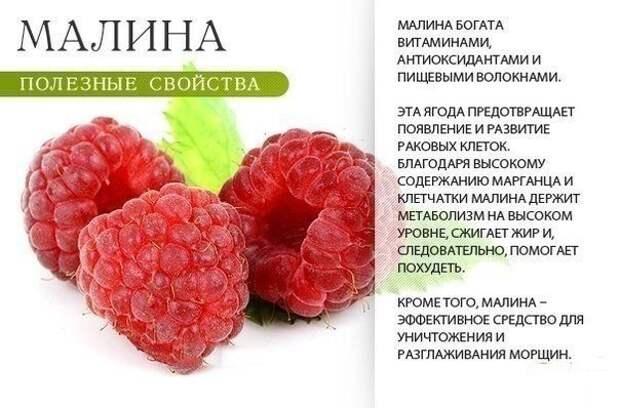 Вот сколько пользы нам дарит летняя фруктово-ягодная пора