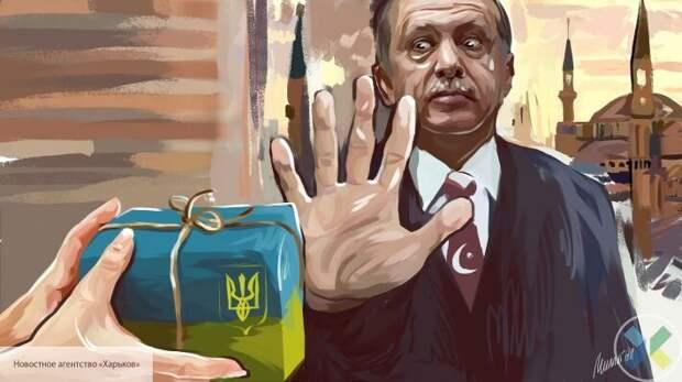 Турецкие СМИ сообщили, чем грозит Эрдогану сотрудничество с Украиной