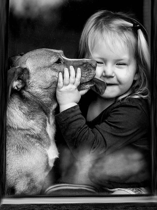 Лучший друг – это тот Человек, с которым ты можешь сидеть на крыльце, не проронив ни слова, и уйти с чувством, что это была лучшая беседа в твоей жизни дети, животные, фотография