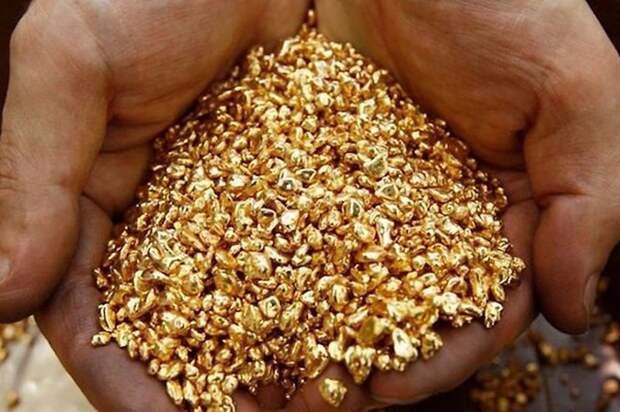 Золото — это настолько редкий металл, что за один час в мире находят больше железа, чем за всю историю нашли золота. информация, картинки, факты