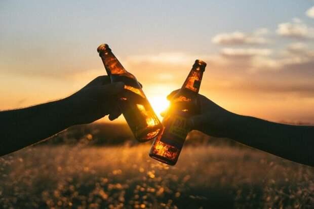 Врач предупредила об опасности безалкогольного пива