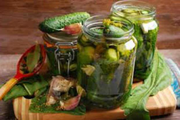 Вкусные маринованные огурцы на зиму, рецепты для всех