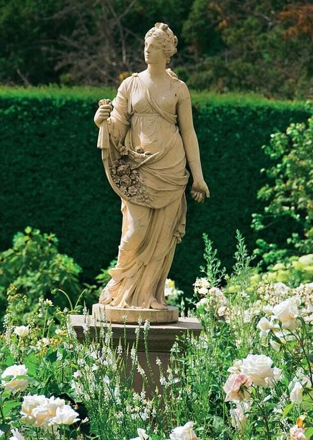 Чайно-гибридная роза Polarstern