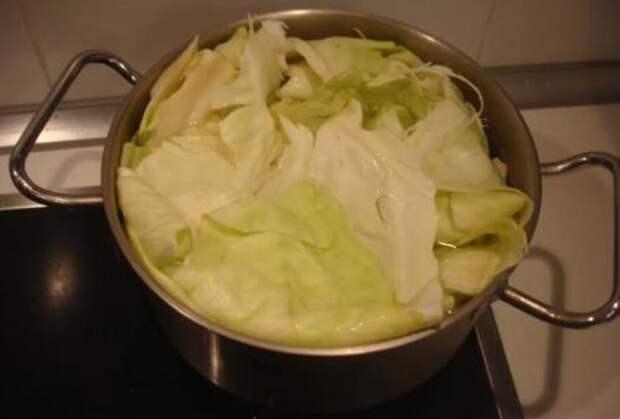 Сосиска в капустном листе: оригинально, просто и вкусно
