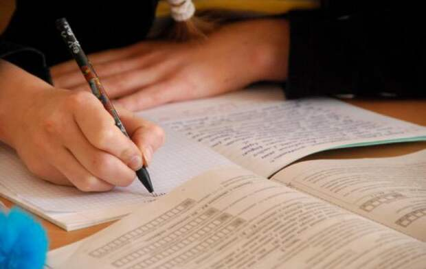 Минобр Карелии считает, что рабочие тетради родители школьни…