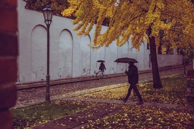 Сезон дождей начинается в Москве