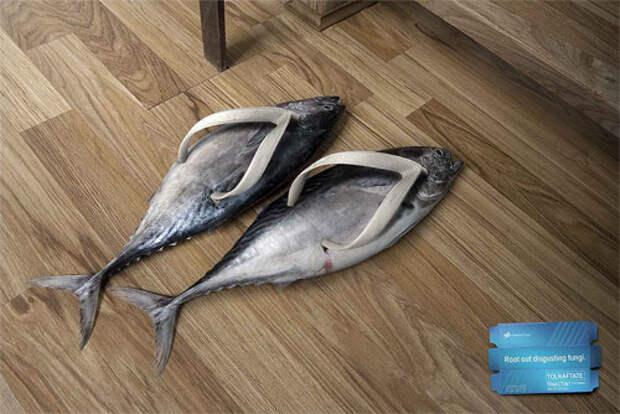 Обувь из селедок и… какашек в рекламе противогрибковой мази