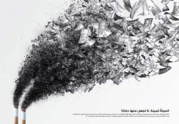Табак вредит не только здоровью