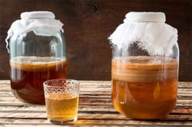 Кислота и брожение. Чем может быть опасен чайный гриб