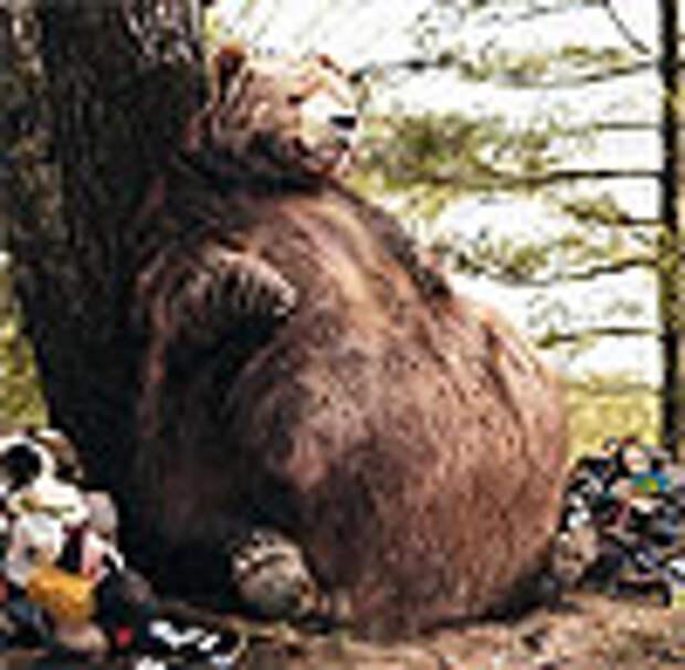Канадский медвед не говорит «превед»
