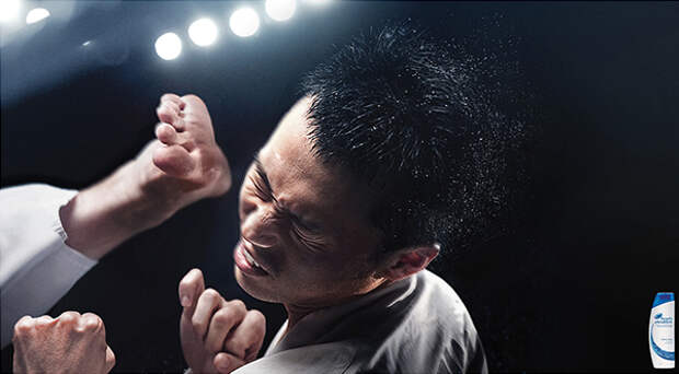 Head & Shoulders: Karate
