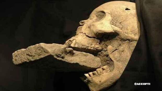 Были времена Вампиры, Археология, Магия, Находка, Мистика