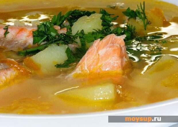 Суп из семги — простой пошаговый рецепт с фото