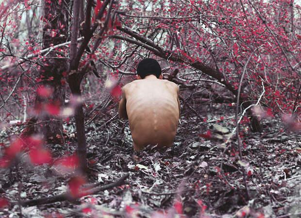 Поразительные работы 16-летнего фотографа