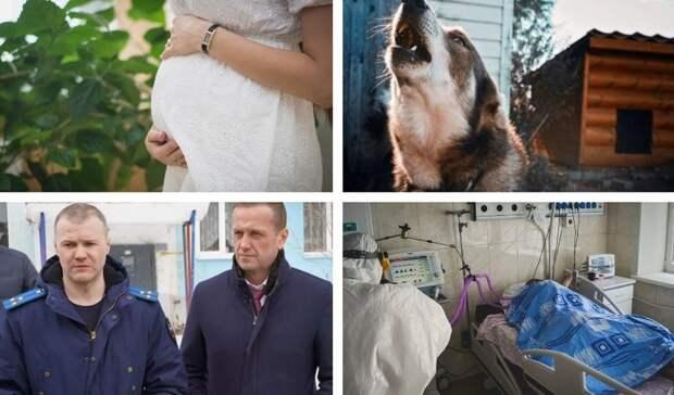 Закрытие родильных отделений и оправдания мэра за плохую уборку: итоги дня