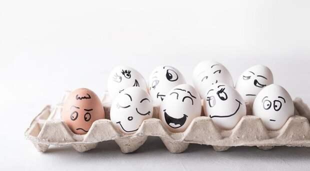 Сколько яиц нужно для счастья