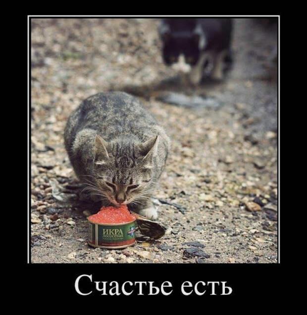 Очень угарные демотиваторы <nobr>за 04.05.2012</nobr> (28 штук)