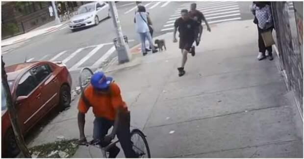 Пожарные догнали мерзавца, ударившего 60-летнюю женщину (1 фото + 1 видео)