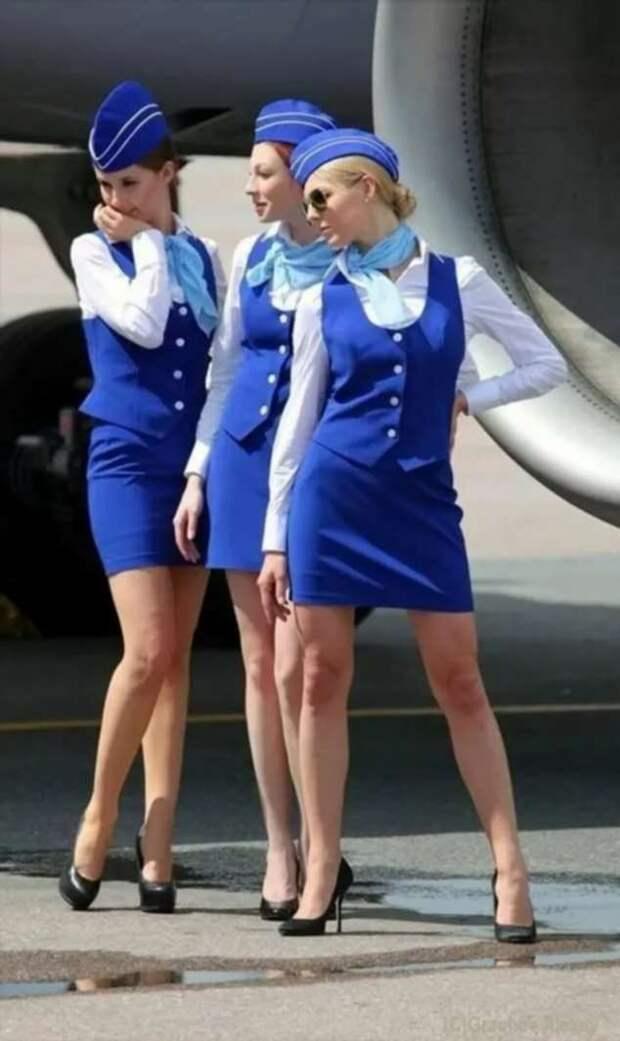 Ножки стюардесс. Подборка chert-poberi-styuardessy-chert-poberi-styuardessy-53370108022021-12 картинка chert-poberi-styuardessy-53370108022021-12