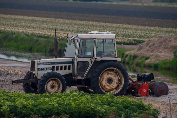Водитель трактора получил срок за смертельное ДТП в Красноперекопске