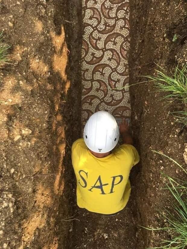 Древнеримский мозаичный пол найден под виноградником