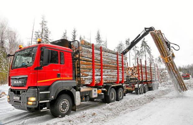 Лесовозы  MAN TGS: кто в лес?