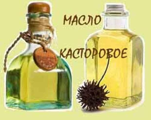 http://irinazaytseva.ru/Pic/kastor.jpg