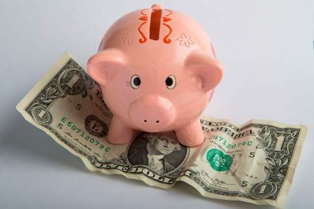 Реакция на санкции США: Минфин увеличивает скупку валюты