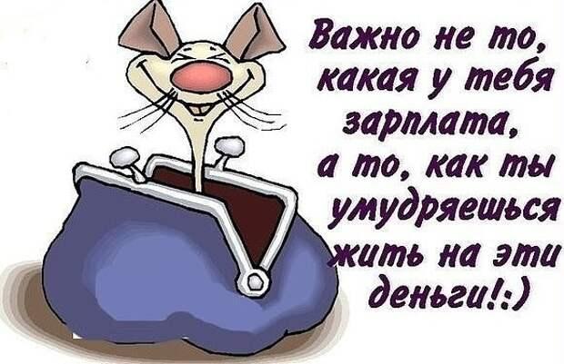 - Цилечка, дорогая, я сегодня всю ночь плохо спал!...