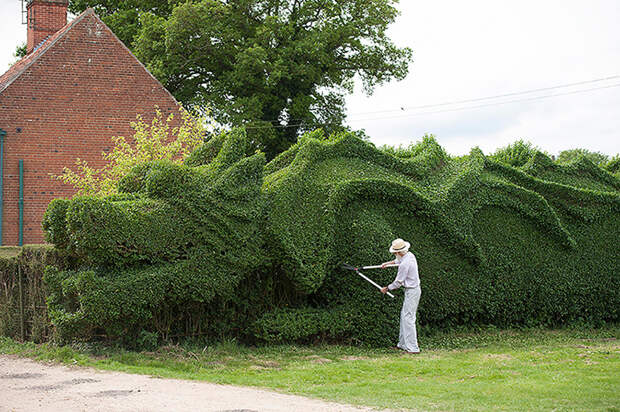 Джон Бурерожденный: англичанин вырастил дракона на своей лужайке