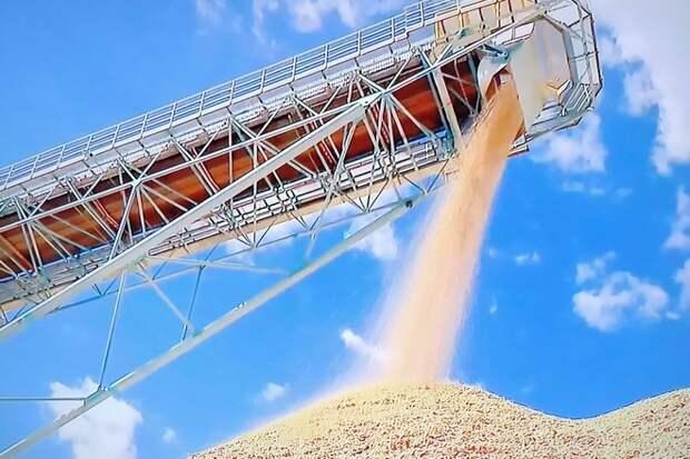 Bloomberg назвало «прорывом» лидерство РФ на мировом рынке пшеницы