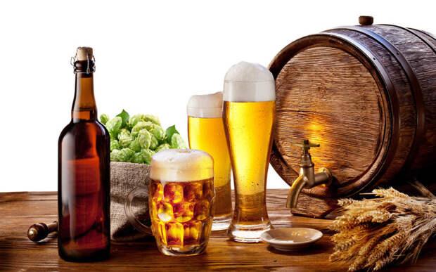 Пиво помогает похудеть еда, здоровье, пиво, прикол, факты
