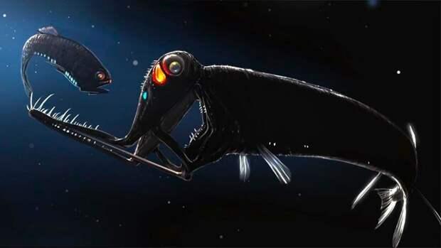 Черный малакост — существо, случайная встреча с которым может стать причиной кошмаров