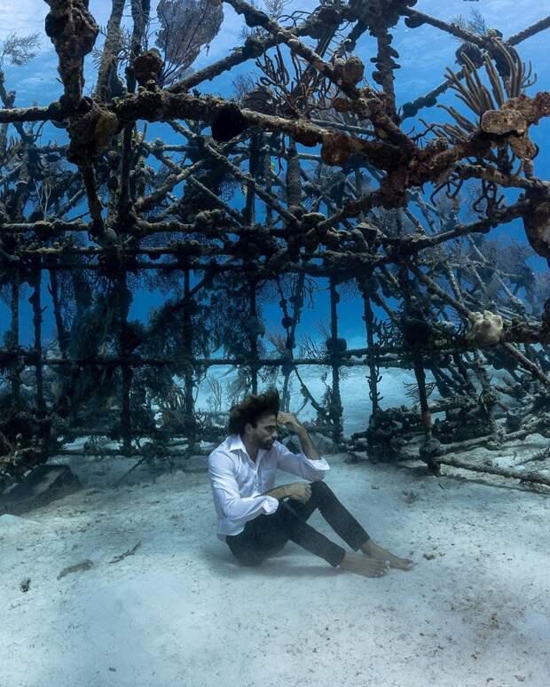 Талантливый фотограф Андре Масгроув делает невероятные подводные снимки