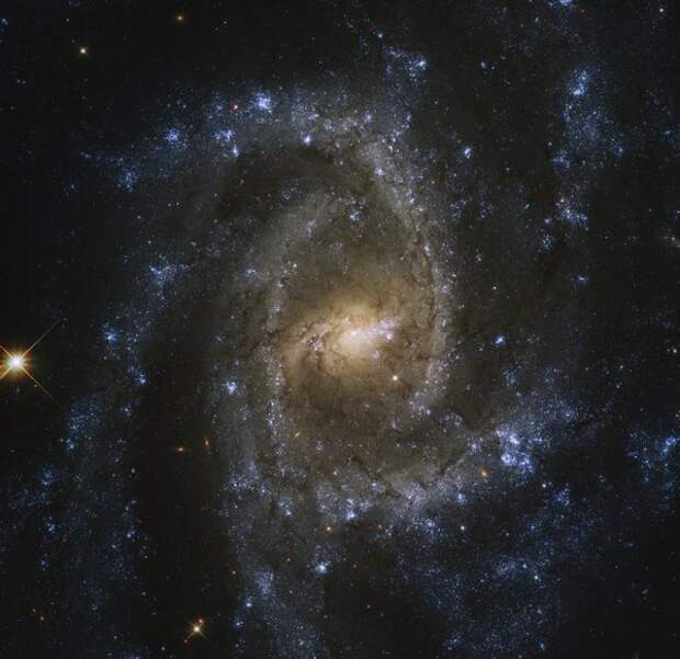 Нобелевскую премию по физике присудили за черную дыру