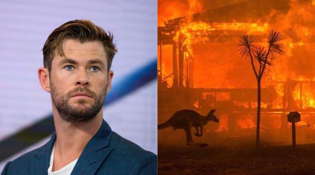 Звезды, которые борются с пожарами в Австралии