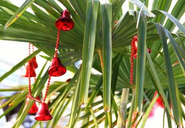 Новогодний интерьер: 5 нестандартных решений