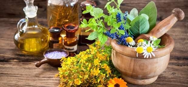 Cкорая помощь без лекарств со своего огорода