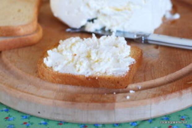 homemade cream cheese (8)