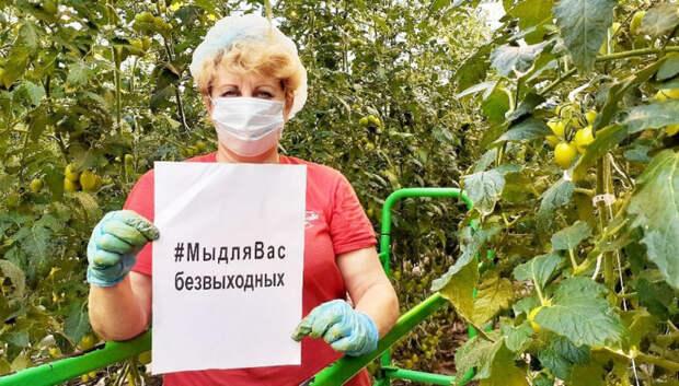 Сельхозпроизводители Подмосковья запустили отраслевую акцию #МыдляВасбезвыходных